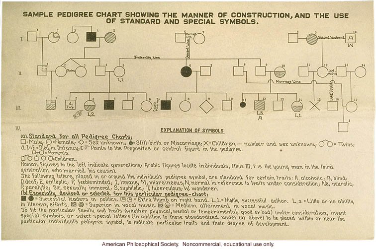 """Sample pedigree chart showing the manner of construction"""
