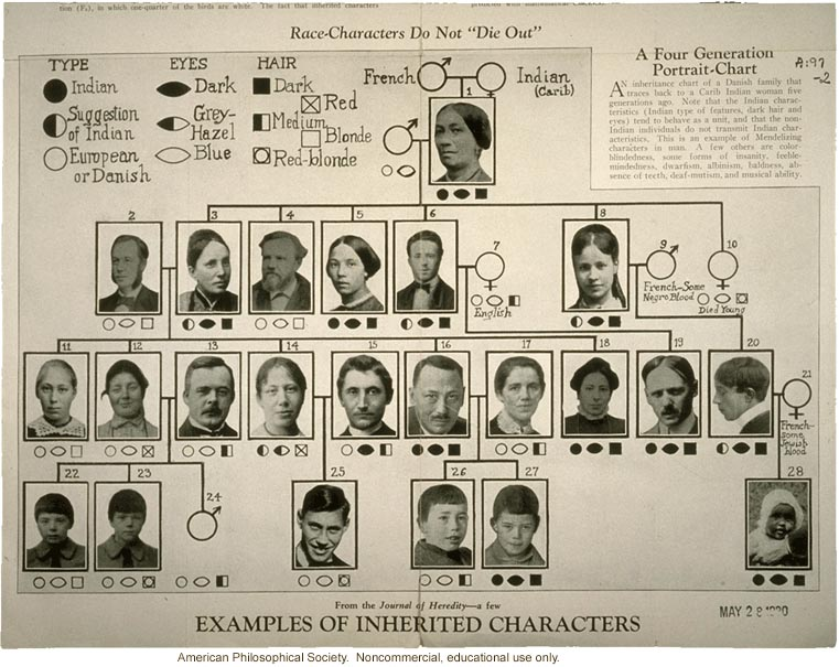 Race Characters Do Not Die Out Examples Of Inherited