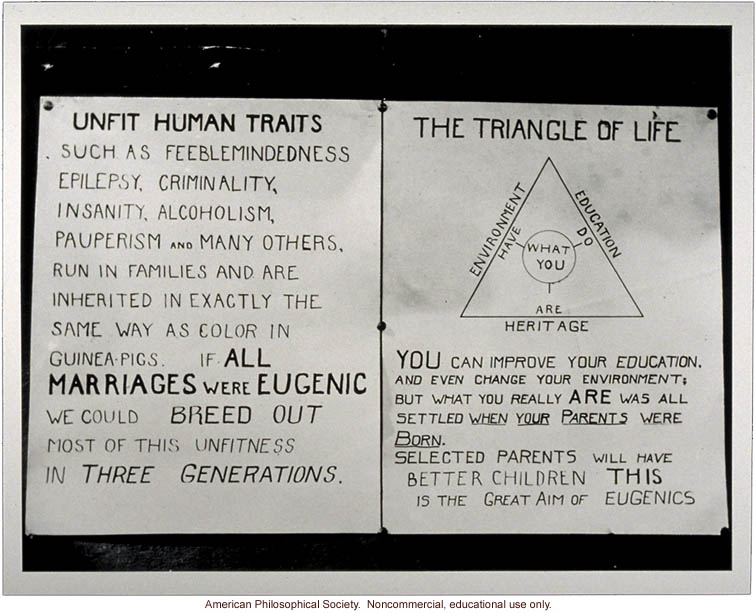 """Unfit Human Traits"" and ""Triangle of Life."""