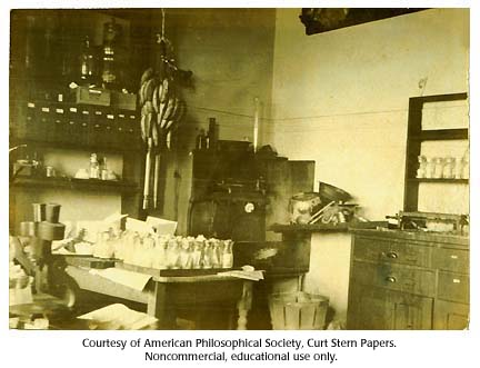 Columbia University Fly Room, around 1920
