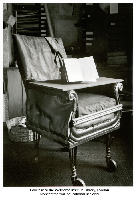 Gallery 12: Charles Darwin's chair