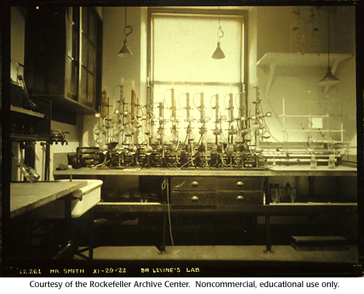 Gallery 15:  Levene's laboratory at the Rockefeller Institute, 1922. (1 of 4)