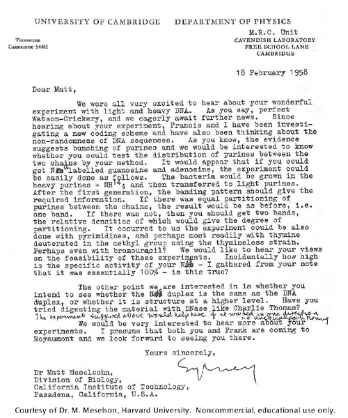 Gallery 21:  Letter from Sydney Brenner to Matt Meselson