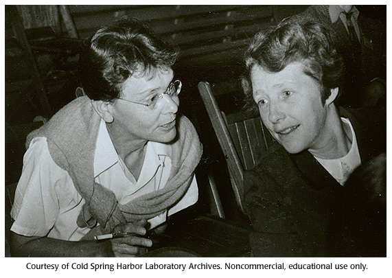 Gallery 32: Barbara McClintock and Harriet Creighton, 1956